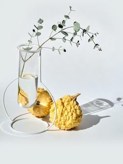 Composition saisonnière automne avec citrouilles décoratives jaunes et eucalyptus dans un vase en verre sur fond blanc avec ombre portée