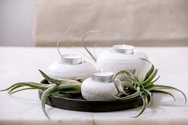 Composition végétale avec air tillandsia et ensemble de bougeoirs en porcelaine céramique artisanale sur plaque sombre sur table en marbre blanc.