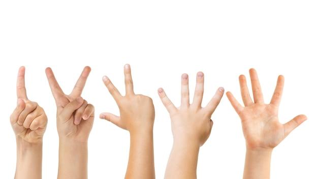 Comptez jusqu'à cinq. mains d'enfants gesticulant isolés sur fond de studio blanc, fond pour l'annonce. foule d'enfants faisant des gestes. concept d'enfance, d'éducation, de temps préscolaire et scolaire. signes et sens.