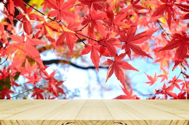 Comptoir de bois en perspective avec jardin d'érable japonais en automne.