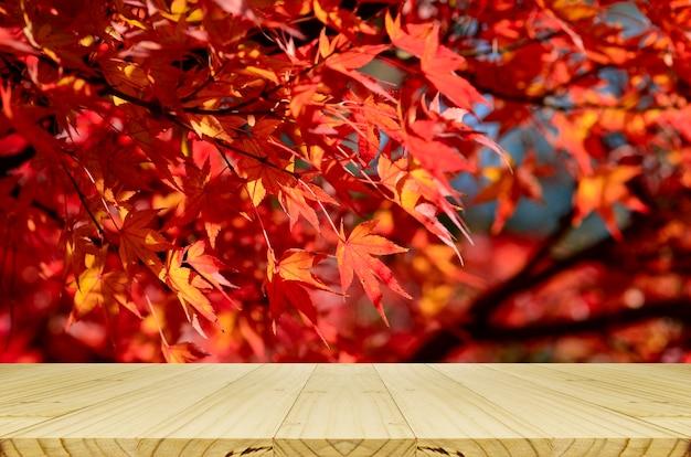 Comptoir en bois perspective avec jardin d'érables japonais entièrement rouge en automne