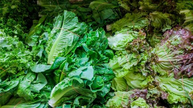 Un comptoir sur le marché fermier des légumes verts biologiques naturels