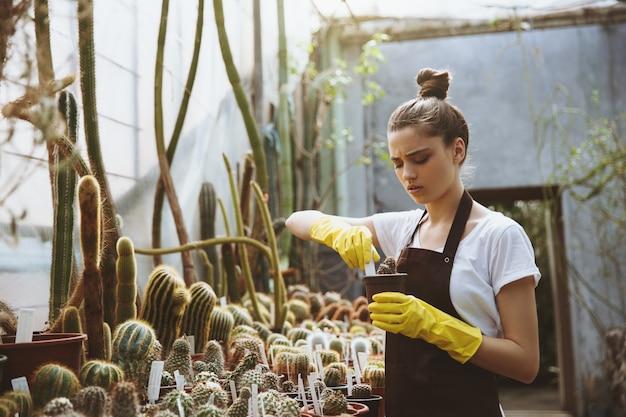 Concentré, jeune femme, debout, dans, serre, tenue, plante