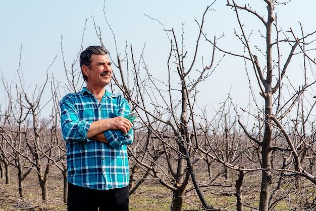 Concept agricole, agriculteur avec des ciseaux d'élagage au printemps dans un verger de pruniers.