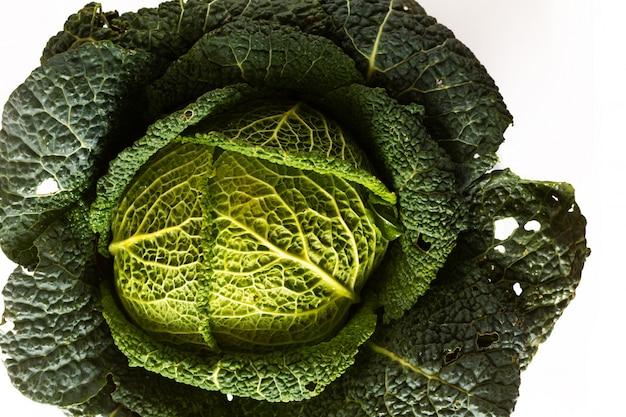 Concept d'aliments sains agrandi organique chou vert savoyard frais du jardin