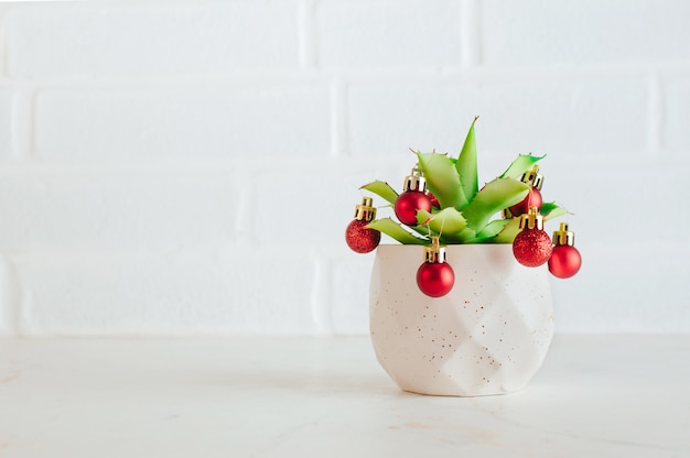 Concept alternatif d'arbre de noël. plante succulente décorée de boules de noël sur fond blanc. mise au point sélective.