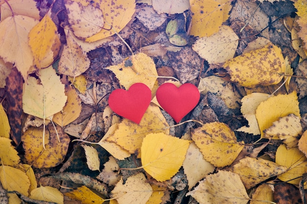 Concept d'amour ou d'amitié