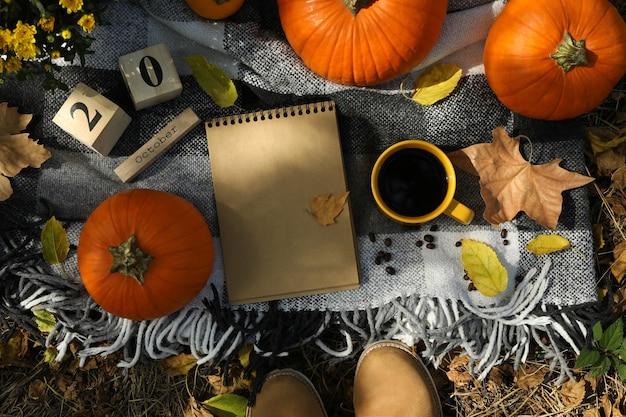 Concept d'automne confortable avec des citrouilles en plein air