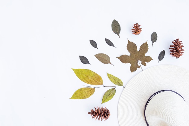 Concept d'automne minimaliste. feuilles séchées, fleurs de pin, chapeau blanc isolé sur fond de papier blanc