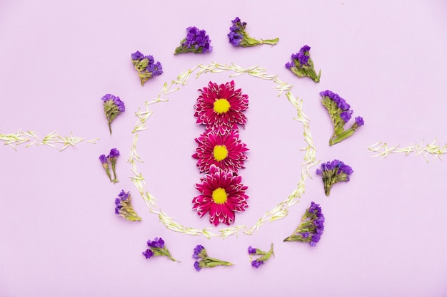 Concept de cadre de belle fleur