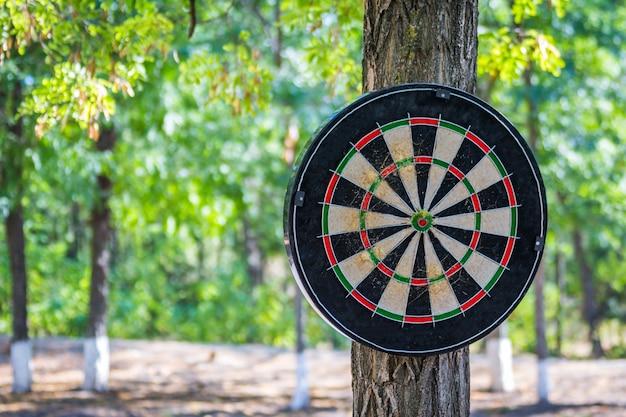 Concept commercial, flèches de fléchettes au centre de la cible