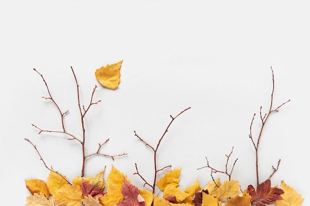 Concept créatif d'automne. branches d'arbres et feuilles d'automne colorées tombées sur fond gris. vue de dessus, mise à plat.