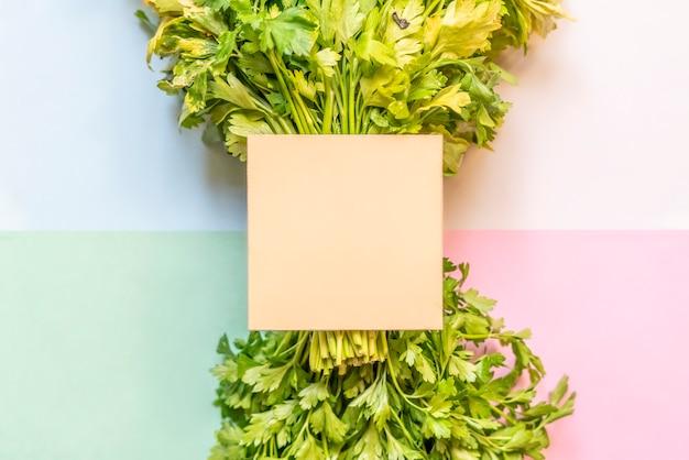 Concept créatif avec bouquet de persil avec copie espace isolé avec fond de couleur douce f