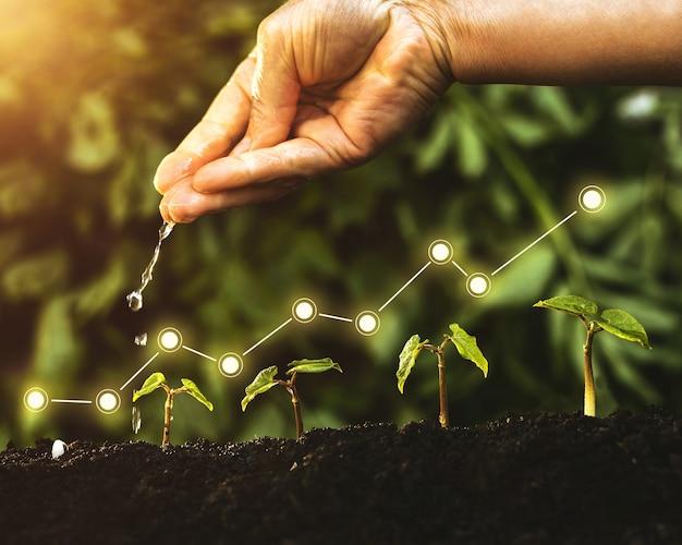 Concept de croissance d'entreprise, de profit, de développement et de succès