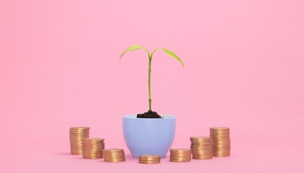 Concept de croissance financière investir les actions payer des impôts