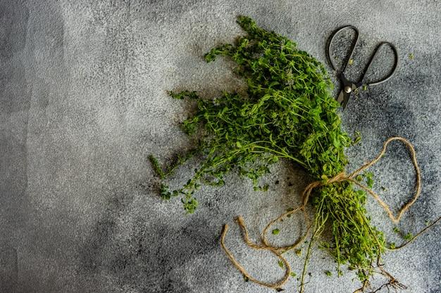 Concept de cuisson avec des herbes
