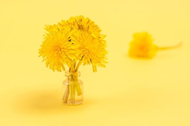 Concept de décoration petit bouquet de pissenlits