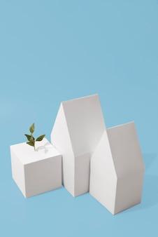 Concept de durabilité avec des formes géométriques et des plantes en croissance