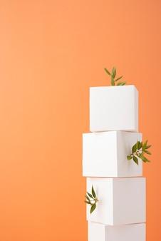 Concept de durabilité avec des formes géométriques vierges et une plante en croissance