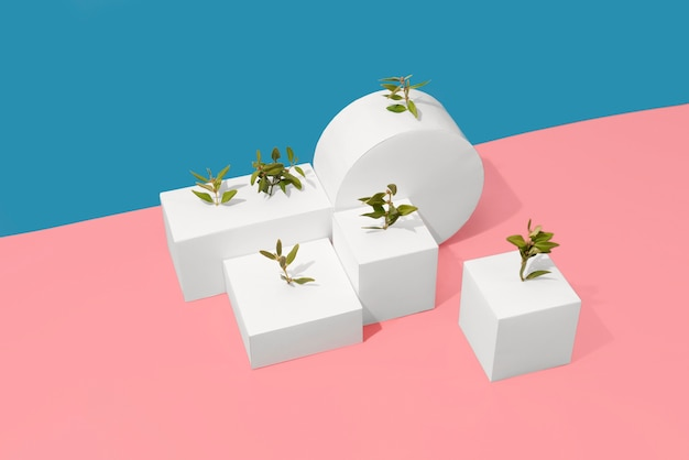 Concept de durabilité avec des plantes poussant à partir de formes géométriques vierges