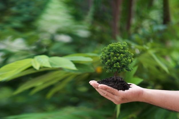 Concept eco jour de la terre