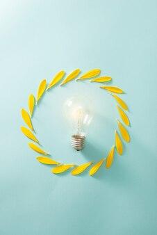 Concept d'écologie et d'économie d'énergie avec ampoule éco