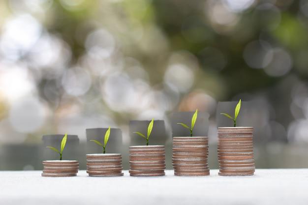 Concept d'économie d'argent. financer le développement durable