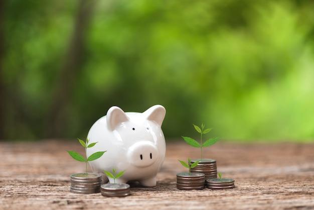 Concept d'économie d'argent tirelire blanche et un arbre planté sur une pièce de monnaie