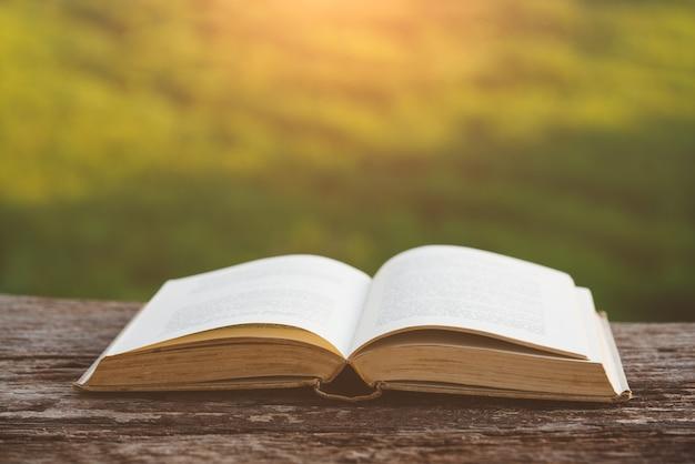 Concept de l'éducation, livre ouvert sous la lumière du soleil à l'extérieur