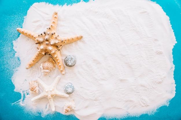 Concept de l'été avec étoile de mer et surface