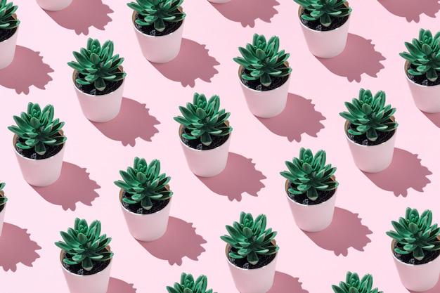 Concept d'été minimaliste fabriqué à partir de plantes artificielles.