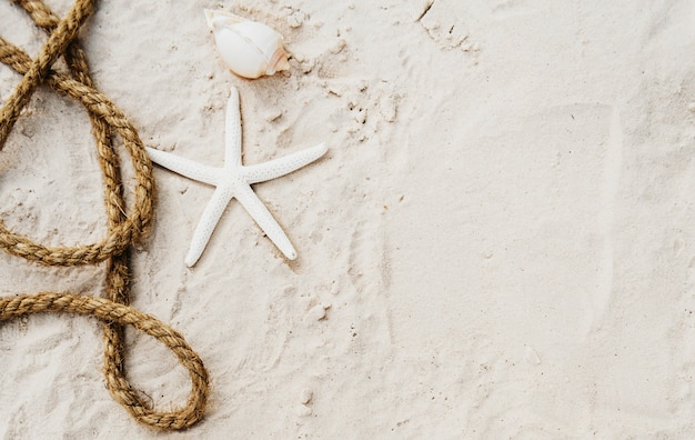 Concept d'exploration plage vacances d'été vacances