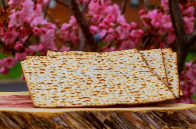 Concept de fête de pesah vacances de la pâque juive.