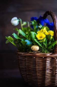 Concept floral de printemps