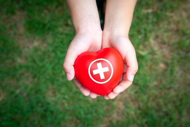 Concept d'icône médical au cœur des mains de la famille