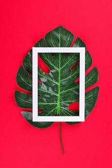 Concept d'idées d'été feuille tropicale frontière cadre noir blanc sur fond rouge.