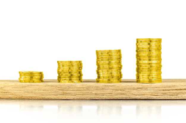 Concept d'investissement, d'argent, d'intérêt et financier