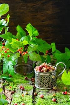 Concept de jardinage à domicile. baies d'os et de fraises sur le vieux fond en bois avec de la mousse