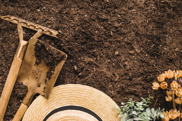 Concept de jardinage avec espace sur le dessus