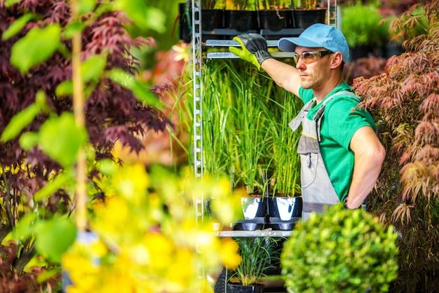Concept de jardinage en serre