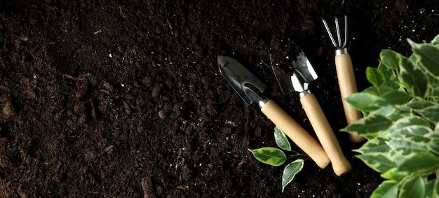 Concept de jardinage sur le sol