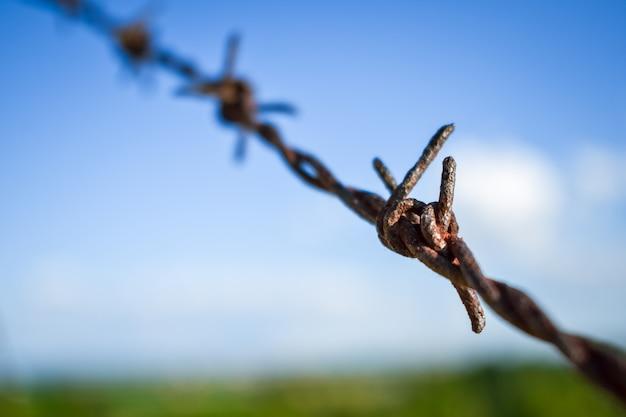 Concept de liberté. clôture en fil de fer sur fond de ciel bleu et champ vert