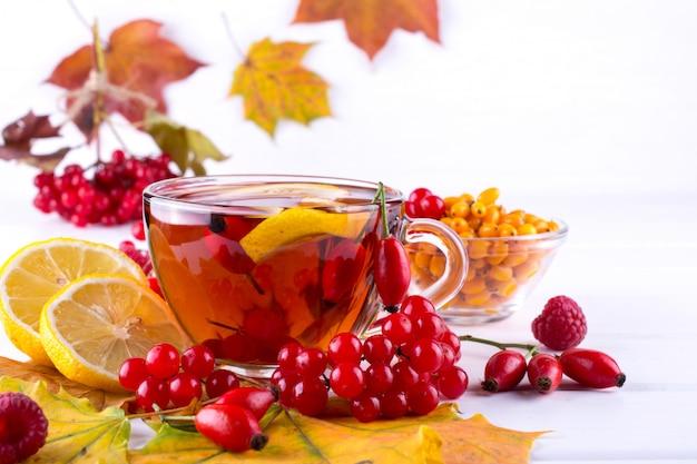Concept de maladie: tasse de thé avec des baies d'argousier, de viorne, de cynorrhodon, de sorbier et de feuilles d'automne. boire avec de la vitamine c