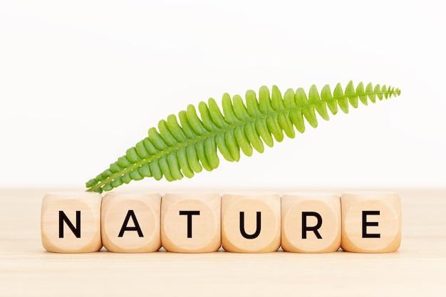 Concept de la nature. blocs en bois avec texte et feuille verte sur table.
