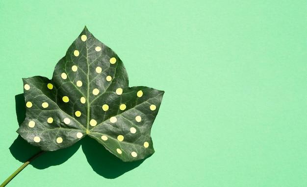 Concept de nature morte nature morte dotty leaf sur fond d'espace de copie