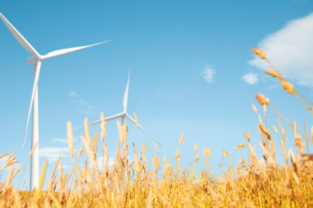 Concept de paysages naturels de windmill grassland field hill
