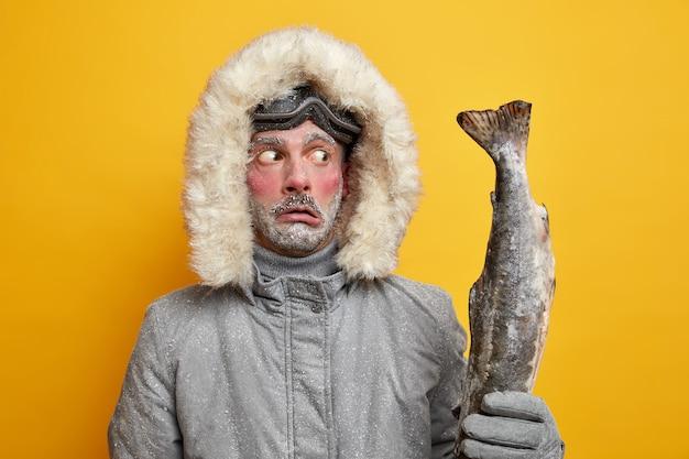 Concept de pêche et de sport d'hiver. un homme gelé choqué tient stupéfait par une grosse capture de trophée. le poisson attrapé porte des vêtements d'extérieur a le visage rouge recouvert de neige.