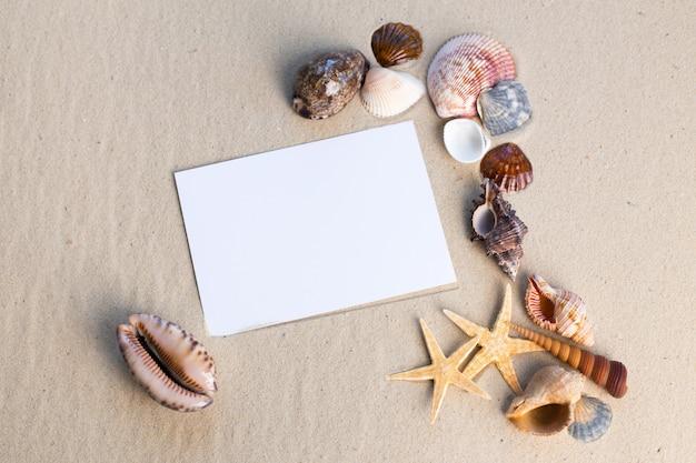 Concept de plage de vacances avec coquillages, étoiles de mer et une carte postale vierge
