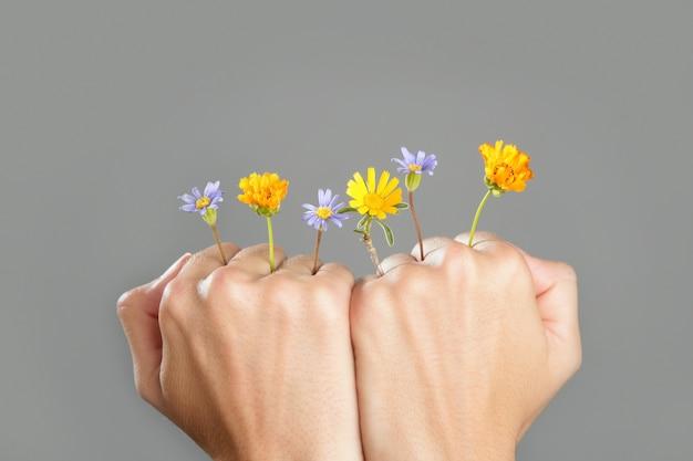 Concept, plante, croissant, mains femme