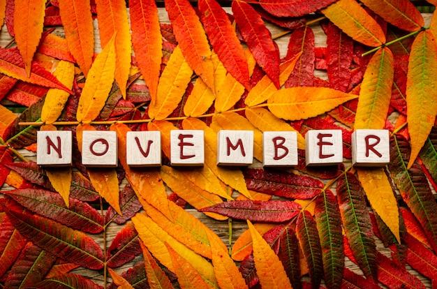 Concept pour le mois de novembre avec des feuilles colorées avec du texte sur des blocs de bois blancs